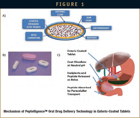 DRUG DELIVERY - Oral Delivery of Peptides by Peptelligence Technology