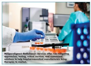MilliporeSigma's BioReliance® Services offer risk-mitigating approaches, testing, critical services, and customized solutions to help biopharmaceutical manufacturers bring therapies to market.