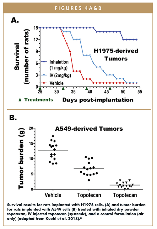 Survival results for rats implanted with H1975 cells, (A) and tumor burden for rats implanted with A549 cells (B) treated with inhaled dry powder topotecan, IV injected topotecan (systemic), and a control formulation (air only) (adapted from Kuehl et al. 2018).3