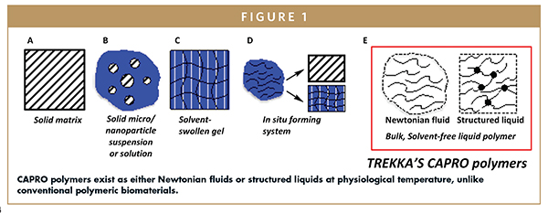 CAPRO polymers exist as either Newtonian fluids or structured liquids at physiological temperature, unlike conventional polymeric biomaterials.