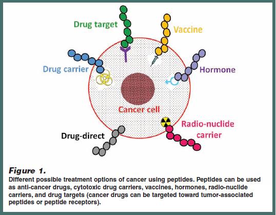 Formulation Development Peptide Based Cancer Therapeutics